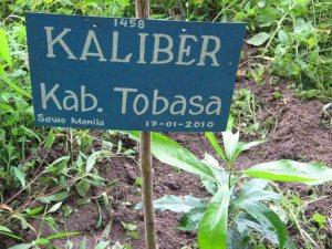 KALIBER TOBASA
